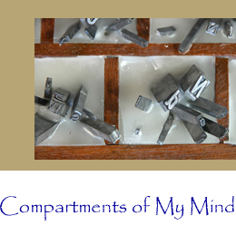 Detail: Compartments of My Mind