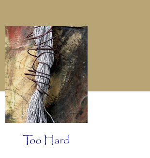 Kathy Miller, Detail: Too Hard